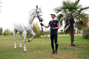 L'Holsteiner Cassino è il nuovo performer di Filippo Bologni 3