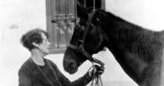 Doroty Brooke: l' angelo custode dei War Horses