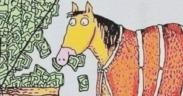 """Equestrians! Ma quanti soldi """"buttiamo"""", rispetto alle persone """"normali""""?"""