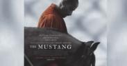 """""""Non sono bravo con le persone"""" - """"The Mustang"""" il film, scopriamo di più"""