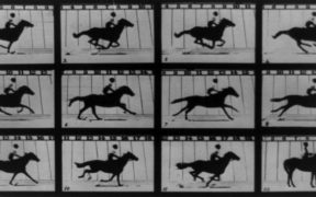 The Horse In Motion(1878),