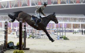LGCT Doha, un altro ottimo piazzamento per Alberto Zorzi