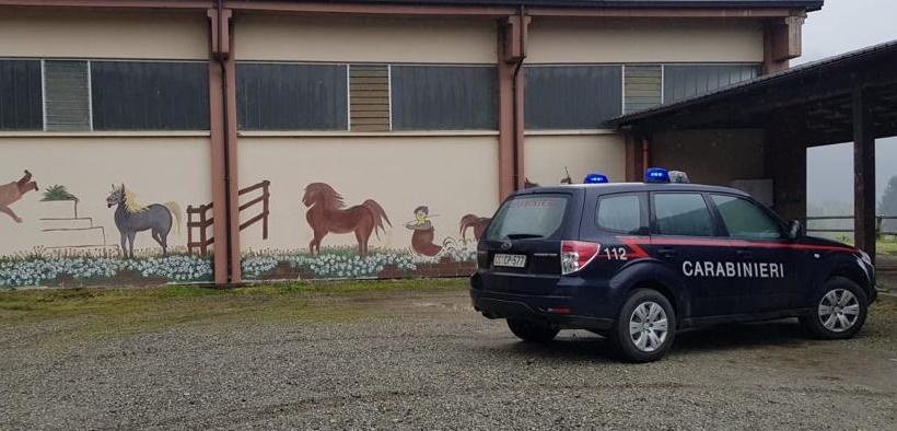 Lucchetti ai box per sfratto di un maneggio in Piemonte, sotto sequestro i cavalli