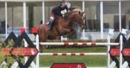 Toscana Tour CSI3*, Filippo Bologni con Diplomat vince la 145