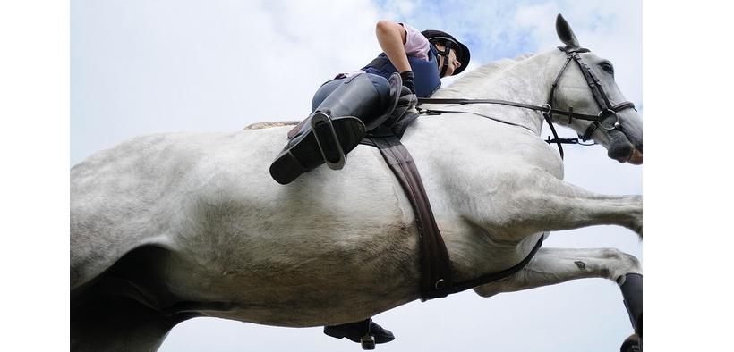 Gli effetti di sottopancia e sella sul movimento del cavallo