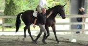 Una lunga chiacchierata con Angelo Telatin sull'equitazione consapevole