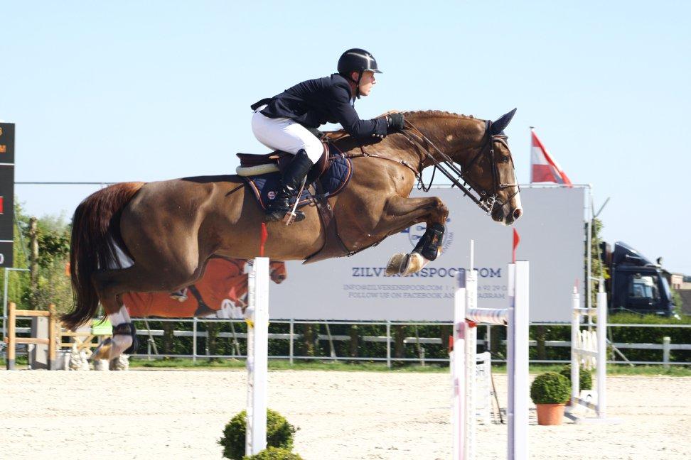 Due nuovi cavalli sotto la sella di Lorenzo de Luca 1