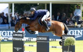 Top Jumping Horses: H&M All Inn 1