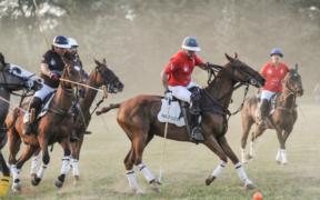 Umbria Polo Club: l'evento di Città della Pieve (PG), 25-27 luglio