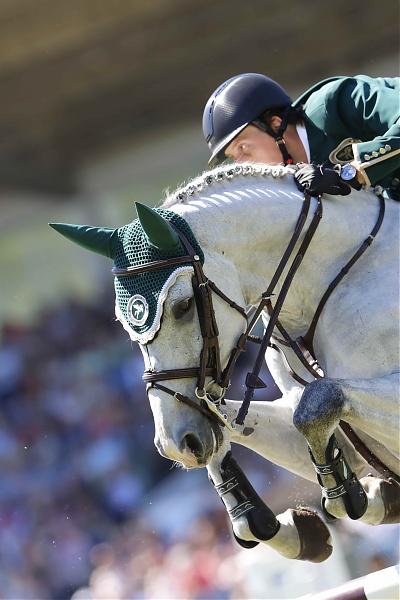 Top Jumping Horses: Clooney 51 2