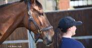 Al Forlì International Horse Fair focus sul cavallo come risorsa sociale