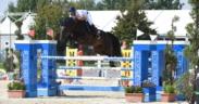 I nostri binomi ai Mondiali Young Horses di Lanaken 1