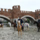 """Il Festival veronese """"Tocatì"""" salta in sella con Horse Experience di Fieracavalli"""