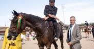 Gaudiano e Carlotta siglano il Prix Sorec (h145) a Rabat (CSIO4*-W)