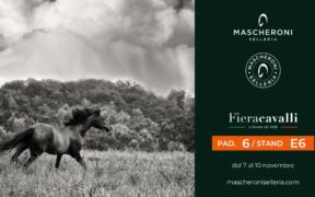 Mascheroni Selleria a Fieracavalli: oltre 300 mq di area espositiva commerciale (Padiglione 6) 4