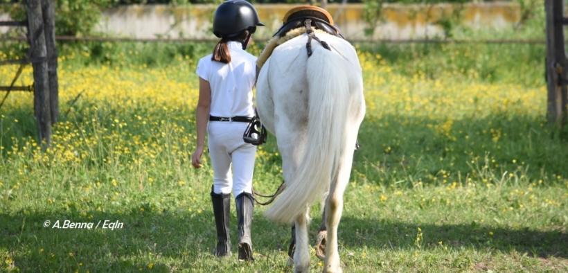 Tutela dei minori e delle donne nell'equitazione: nuovi provvedimenti FISE