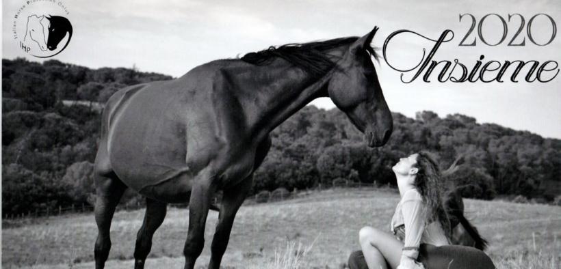 Insieme 2020: un calendario d'autore per IHP - Italian Horse Protection Onlus