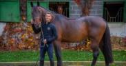 Un nuovo cavallo per Filippo Bologni 2