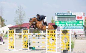 Un nuovo cavallo per Lorenzo de Luca
