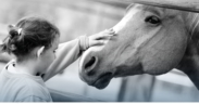 Emotional transfertra uomo e cavallo: non c'è nulla di meglio...