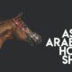 Novità 2020: Asian Arabian Horse Show ai Longines Masters di Hong Kong