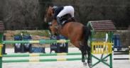 Salto ostacoli: La FEI annulla per irregolarità alcune gare qualificanti disputate in Francia e Siria