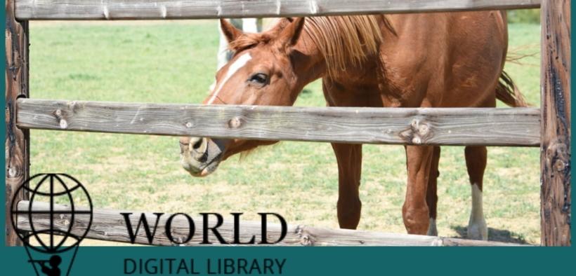 Cavalli.... sfogliando la World Digital Library