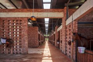 Architettura e design per le strutture equestri: sogni che diventano realtà 4