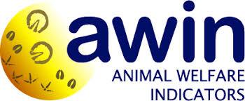 Ecco il Protocollo AWIN per la valutazione del benessere dei cavalli 7