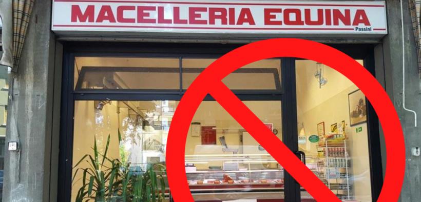 In Grecia la macellazione equina vietata per Legge