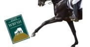 Dressage, gli Studbook da privilegiare - con attuale Ranking WBFSH