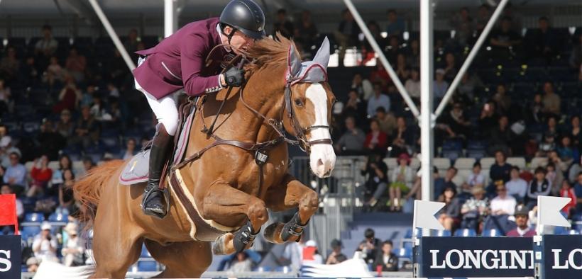 Pensionamento per il 18enne Viking, top horse di Michael Whitaker