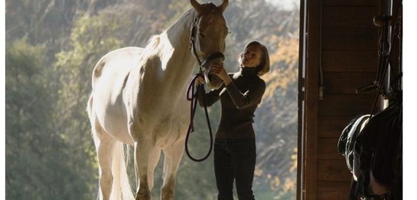 Buffe tipologie di proprietari di cavalli in attività nelle scuderie