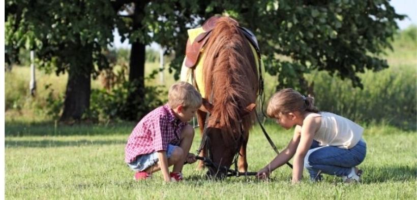 Il valore educativo dell'equitazione è sempre da veicolare per i più piccoli