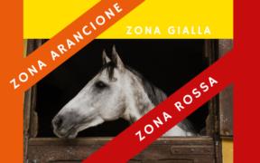 Sport Equestri: alcune regioni cambiano scenario di gravità