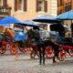 """Roma: un nuovo regolamento per le """"botticelle"""""""
