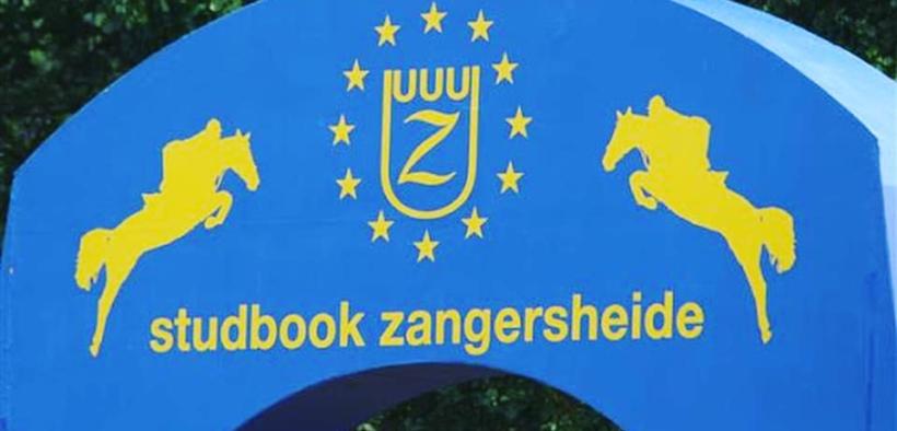 Misure anti EHV della FEI, cancellato anche lo Z-Tour 2021 - Lanaken